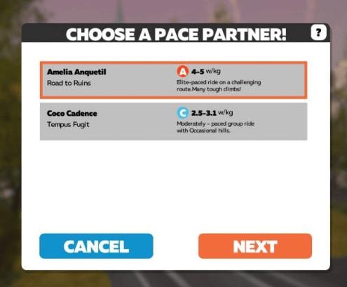 keuze van de pace partner