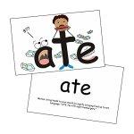 607-Snapwords-Teaching-Cards-0-1
