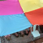 Blanket-Fort-Kit-for-Kids-0-5