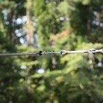 Adventure-Parks-Zip-Line-Brake-Toy-0-1