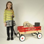 Berlin-F257-Amish-Made-Pee-Wee-Flyer-Wagon-Red-0-2