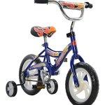 Fun-Wheels-12-Sidewalk-Bicycle-0-0