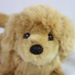 Golden-Retriever-Stuffed-Animal-Therapy-for-People-with-Memory-Loss-from-Aging-and-Caregivers-0-0