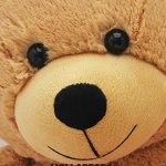 Hollabears-Extra-Large-Shawty-U-Fine-As-Shit-Tho-Teddy-Bear-Funny-and-Cute-Valentines-Day-Gift-for-Girlfriend-Boyfriend-or-Best-Friends-0-2