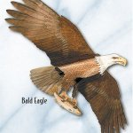 Jackite-American-Bald-Eagle-Kite-0
