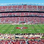 MasterPieces-NFL-Stadium-Panoramic-Jigsaw-Puzzle-1000-Piece-0-0