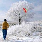 Prism-Quantum-Dual-line-Stunt-Kite-0-1
