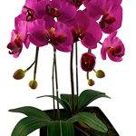 Red-Vanilla-OF064-100-Phalaenopsis-White-Orchid-CenterpieceBlack-Base-0