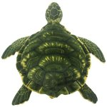 TAGLN-Realistic-Stuffed-Animals-Sea-Turtle-Soft-Plush-Toys-Pillow-for-Children-0