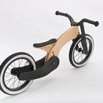 Wishbone-Bike-Cruise-0-2