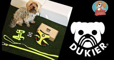 ¡Tu perro o gato a la moda con Dukier!