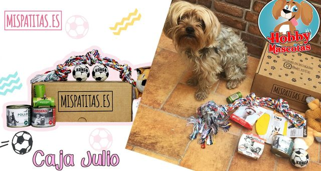 mispatitas julio - hobbymascotas