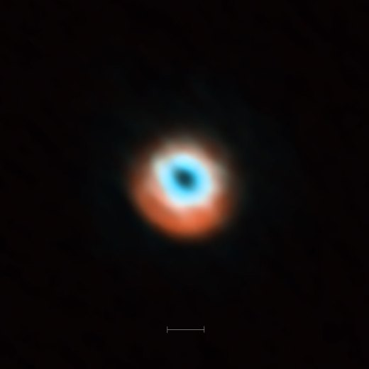ALMA imaging of the transitional disc HD 135344B. This ALMA image combines a view of the dust around the young star HD 135344B (orange) with a view of the gaseous material (blue). The smaller hole in the inner gas is a telltale sign of the presence of a young planet clearing the disc. The bar at the bottom of the image indicates the diameter of the orbit of Neptune in the Solar System (60 AU).