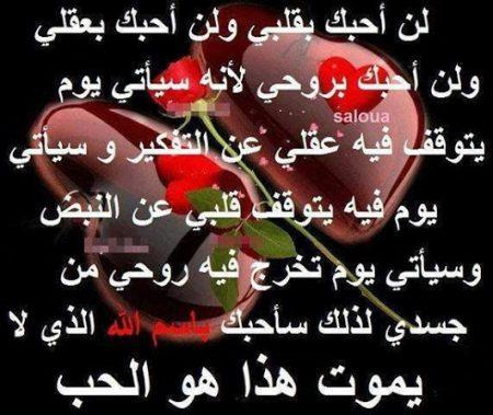 شعر عيد الام اجمل الاشعار المعبرة عن فضل الام حبيبي