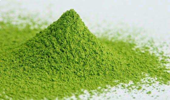 Pemberian tepung daun pepaya sebaiknya sedikit saja, karena dapat mengganggu pertumbuhan pada ayam