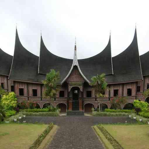 Harga Jual DOD atau Bibit Bebek Peking & Hibrida Pedaging untuk Daerah Bukittinggi Sumatera Barat
