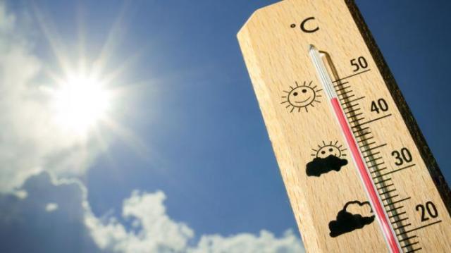 Termometer sebagai Pengatur Suhu di dalam Kandang | Alat