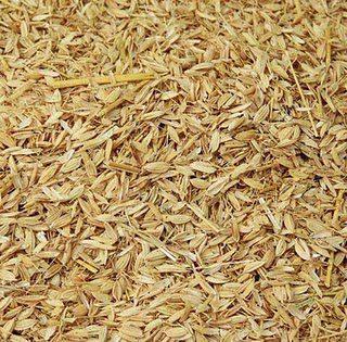 Sekam padi ini juga banyak yang menggunakan, biasanya peternak yang ada di desa menggunakan sekam padi untuk bahan litter karena mudah di dapatkan