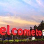 Harga Jual DOD atau Bibit Bebek Peking Pedaging untuk Daerah Bandung