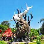 Jual DOD atau Bibit Bebek Peking Pedaging untuk Daerah Surabaya
