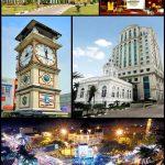 Harga Jual DOD atau Bibit Bebek Peking Untuk Wilayah Medan