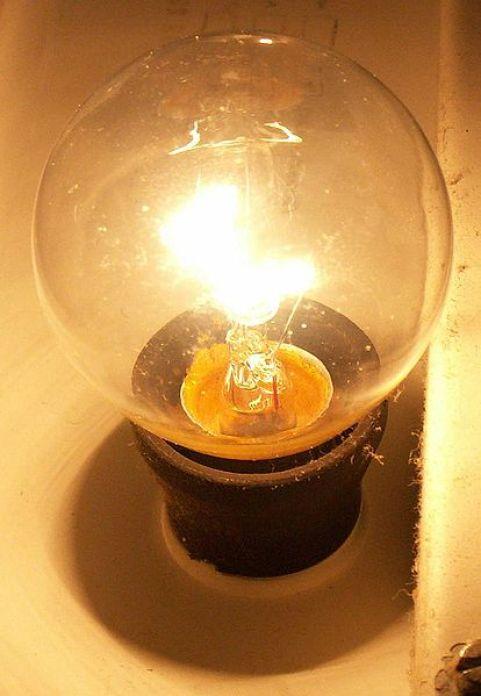 Lampu Penerangan untuk Kandang Bebek