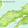 Harga Jual DOD atau Bibit Bebek Peking dan Hibrida Pedaging Untuk Daerah Ambon Maluku