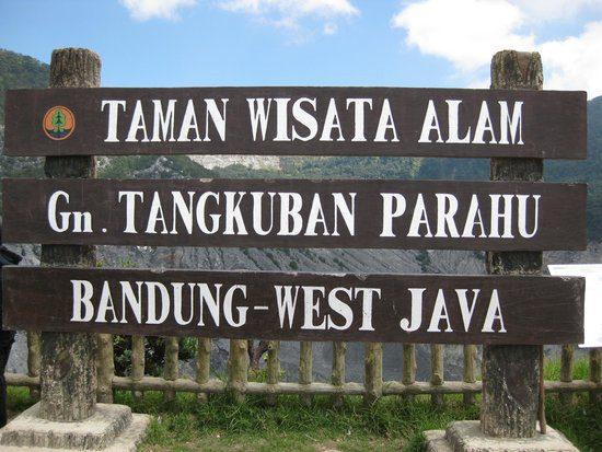 Harga Jual DOD atau Bibit Bebek Peking & Hibrida Pedaging untuk Daerah Bandung