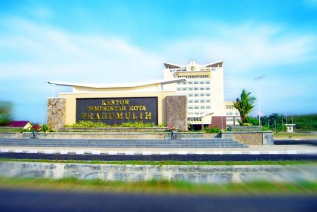 Harga Jual DOD atau Bibit Bebek Peking & Hibrida Pedaging untuk Daerah Prabumulih