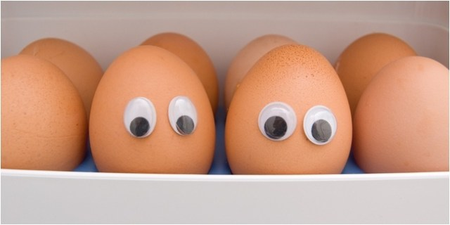 Manfaat telur pun cukup banyak, selain sebagai sumber protein telur mempunyai banyak kandungan gizi yang diperlukan oleh tubuh. | Manfaat Telur