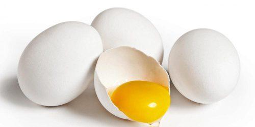 Telur ayam menjadi salah satu penyumbah terbesar kebutuhan akan protein untuk masyarakat Indonesia
