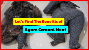 Let's find out the benefits of consuming cemani chicken meat