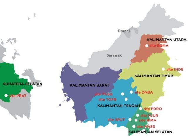Daftar Harga DOC JOPER di wilayah Kalimantan
