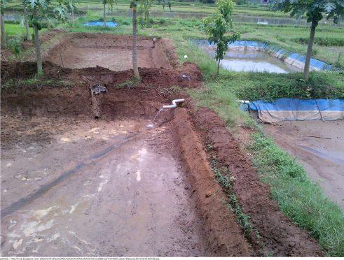 Proses Pengisian Air Kolam pada cara budidaya ikan lele di kolam tanah