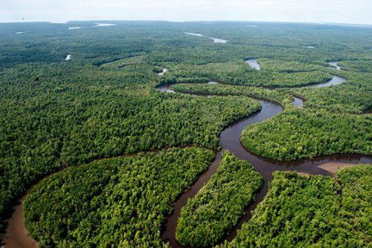 Sungai habitat asli Lele Lokal