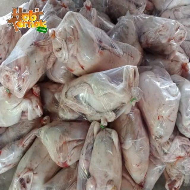 Daging bebek adalah salah satu daging yang banyak di minati oleh rakyat Indonesia. Anda bisa mendapatkannya di hobiternak.com | image 3