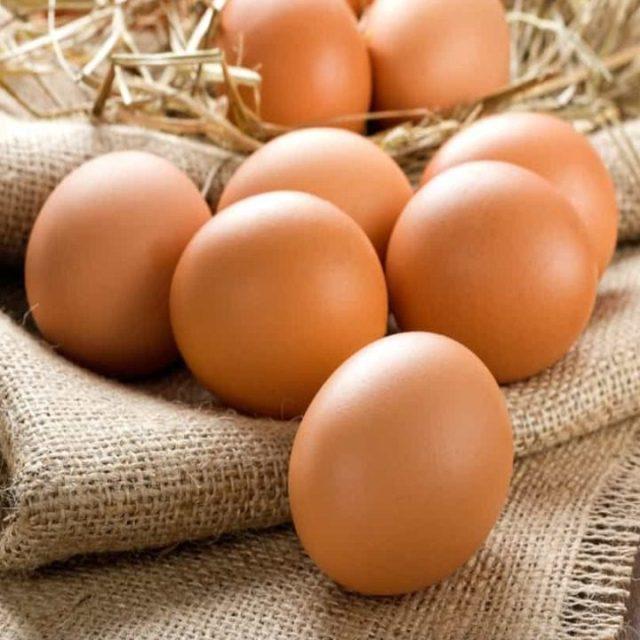 Telur merupakan sumber protein yang baik bagi tubuh. | Telur Ayam