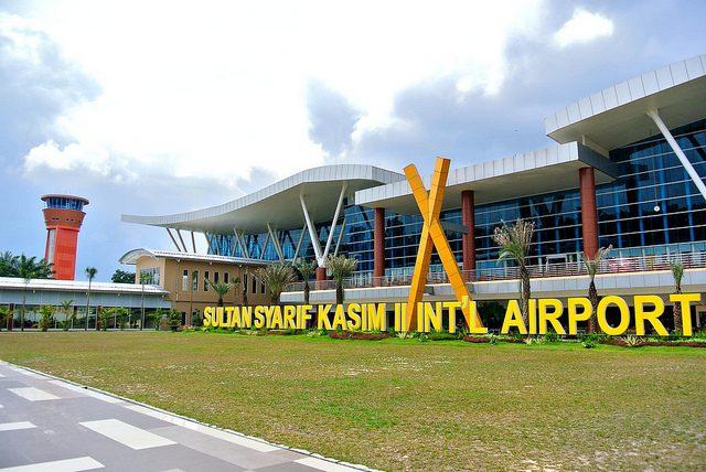 Pengiriman DOC Ayam Kampung Super kr Pekanbaru Riau pengambilan di Bandara Sultan Kasim II