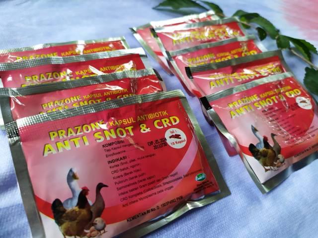 Obat Anti Snot dan CRD dapat dengan mudah ditemukan di toko obat hewan terdekat dan memiliki harga yang terjangkau | image 1