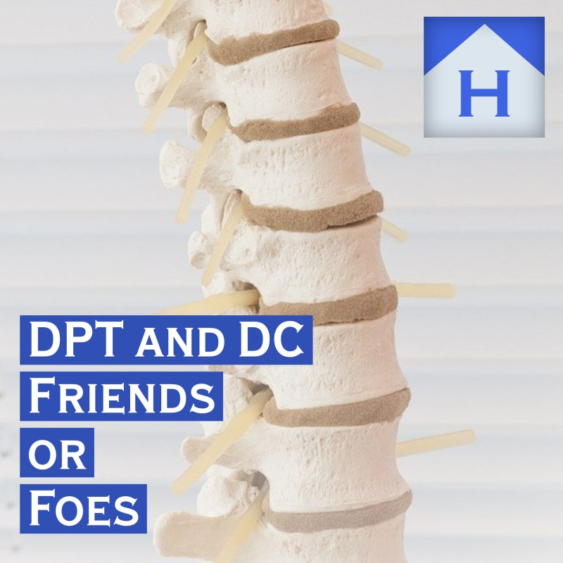 Physical Therapy and Chiropractic Friends or Foes in Spine Care