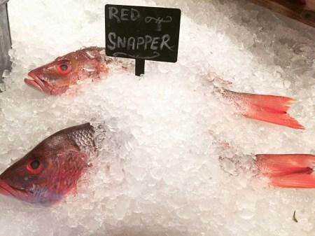 mitchells-fish-market-edgewater