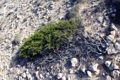 2012_Zypern_Die-Insel-der-Goetter_04