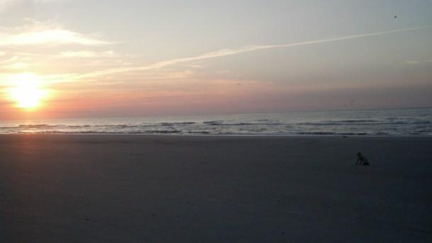 JM crawling  sunrise