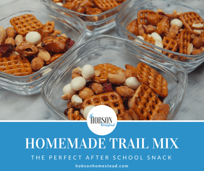 Homemade Trail Mix: The Perfect After School Snack