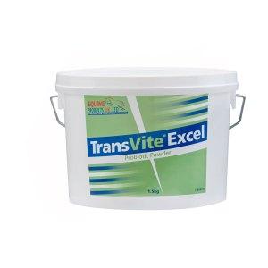 Transvite Excel probiootikumid