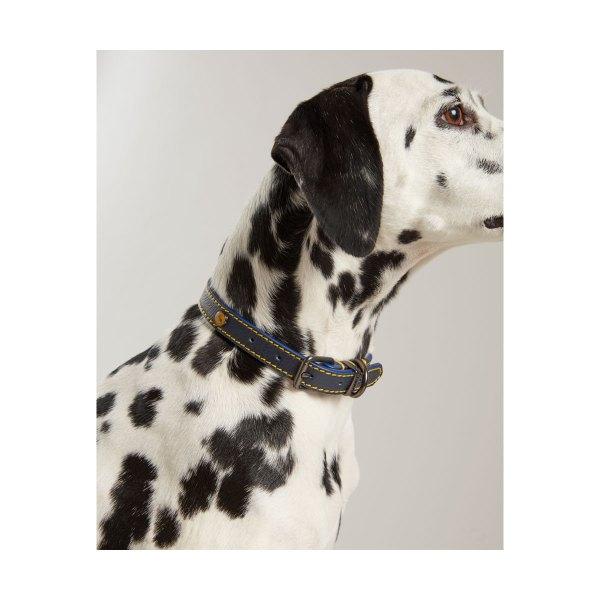 Nahst kaelarohm koerale