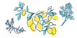 illu-limone
