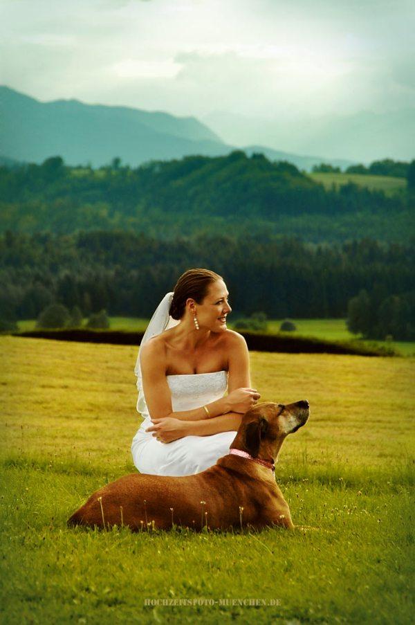 Fotoshooting Hochzeit 14: Braut mit dem Hund in den Bergen