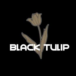 Black Tulip - 512x512 (1_1)