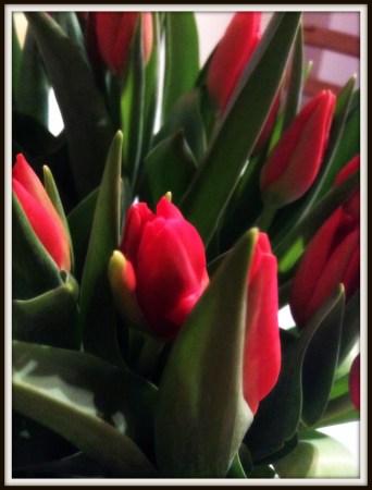 floric